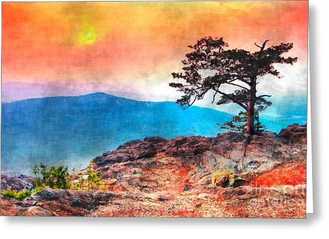 Red Sky Over Ravens Roost IIi Greeting Card