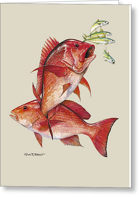 Red Snapper Greeting Card by Kevin Brant