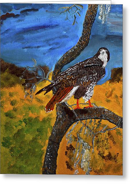 Greeting Card featuring the painting Red-tailed Hawk Perch In Tree by Swabby soileau