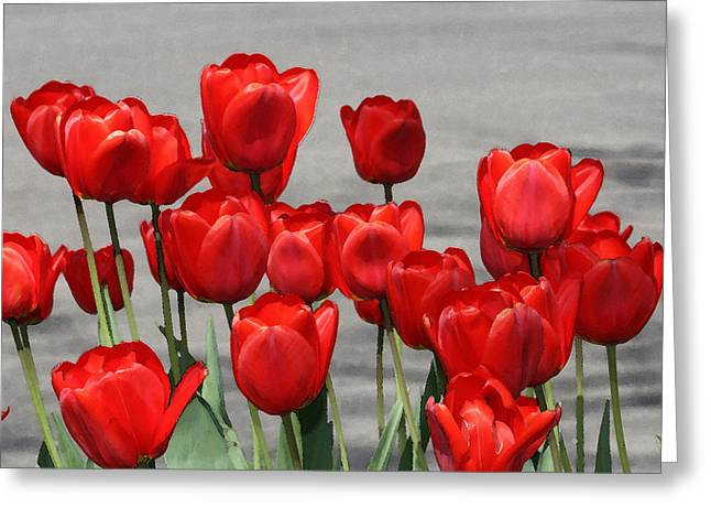 Greeting Card featuring the photograph Red Tulips Welcome Spring by Penny Hunt