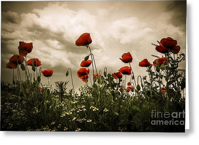 Red Weed Greeting Card by Martin Dzurjanik