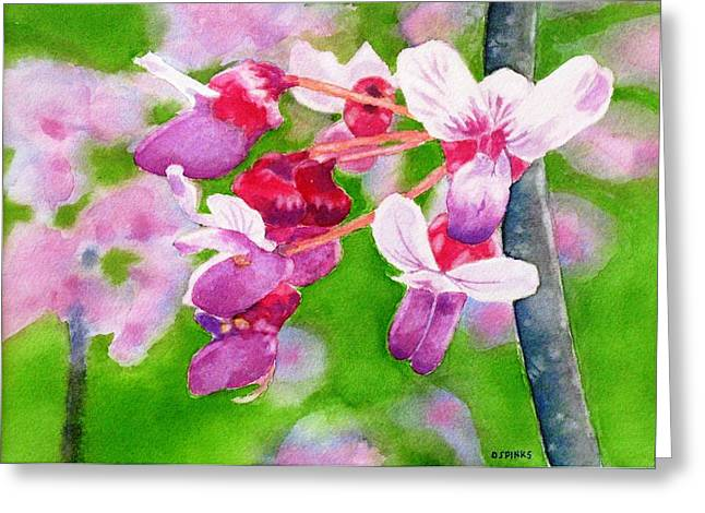 Redbud Greeting Card by Debra Spinks
