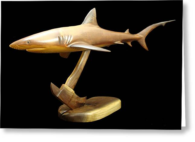 Reef Shark Greeting Card by Kjell Vistnes