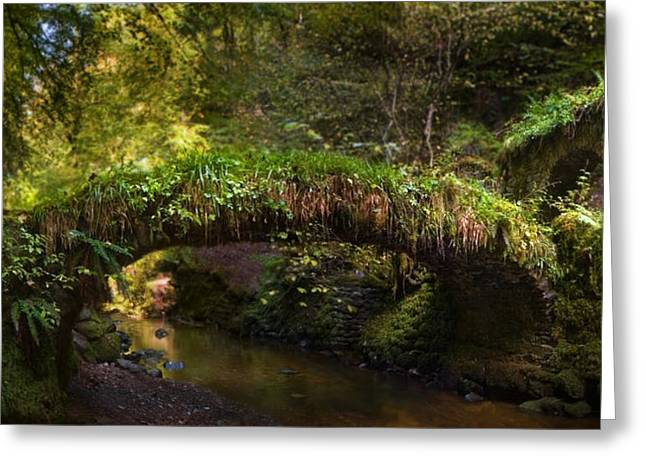 Reelig Bridge And Grotto Greeting Card