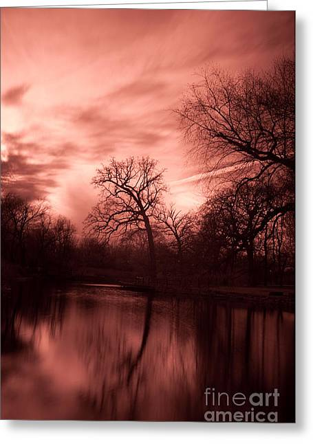 Reflected Greeting Card by Rossi Love