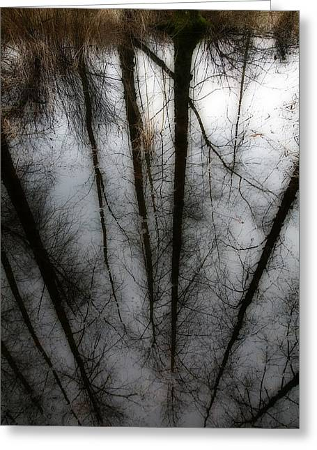Reflecting On A Winter Day Greeting Card by Winston Rockwell