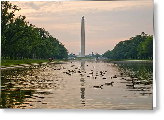 Reflecting Pool And Ducks Greeting Card by Jim Moore