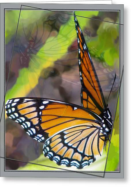 Reflection Back Greeting Card by Debra     Vatalaro