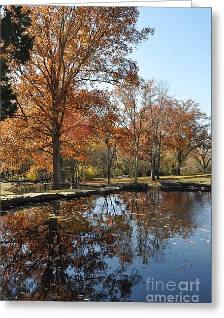 Reflection In The Water Greeting Card by Denise Ellis
