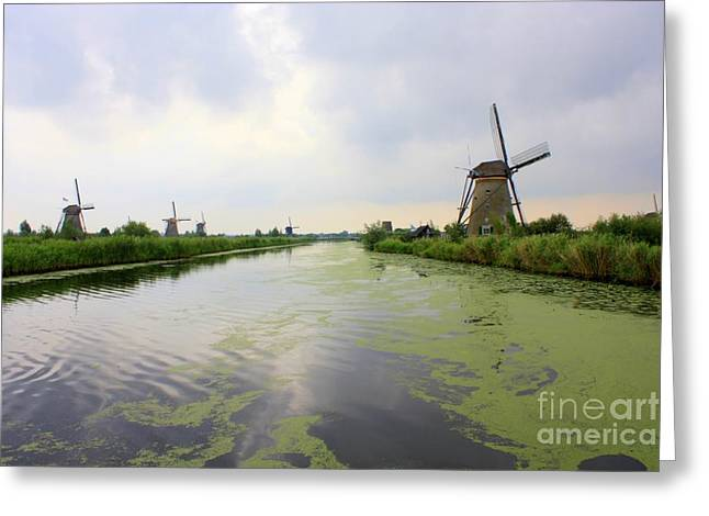 Reflection Of Sky At Kinderdijk Greeting Card by Carol Groenen