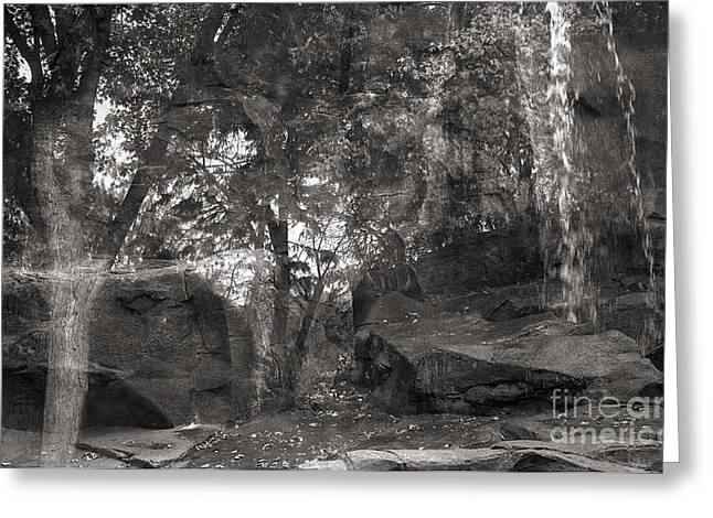 Reflection Of Trees With Rocks And Waterfall Greeting Card