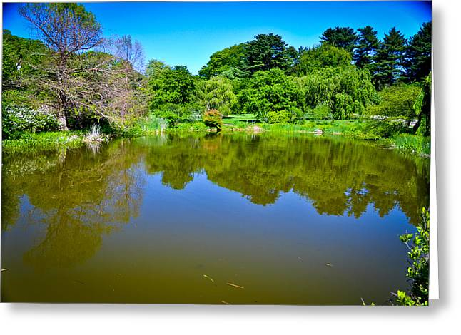 Reflection Pond Greeting Card by Erica McLellan