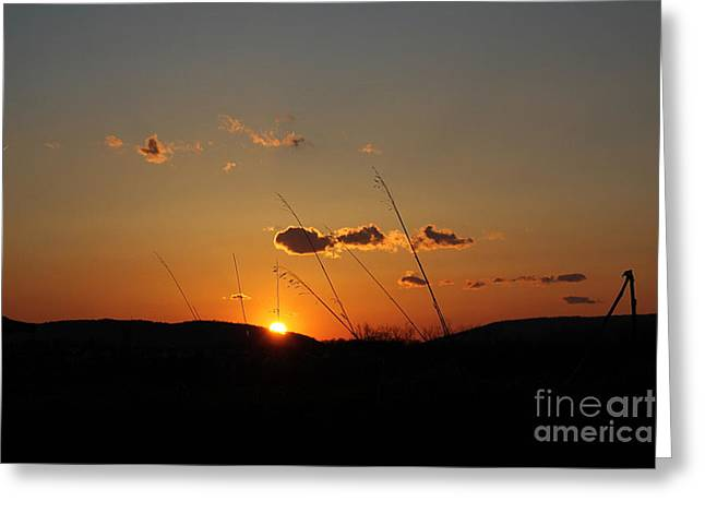 Greeting Card featuring the photograph Reflections At Dusk by Everett Houser