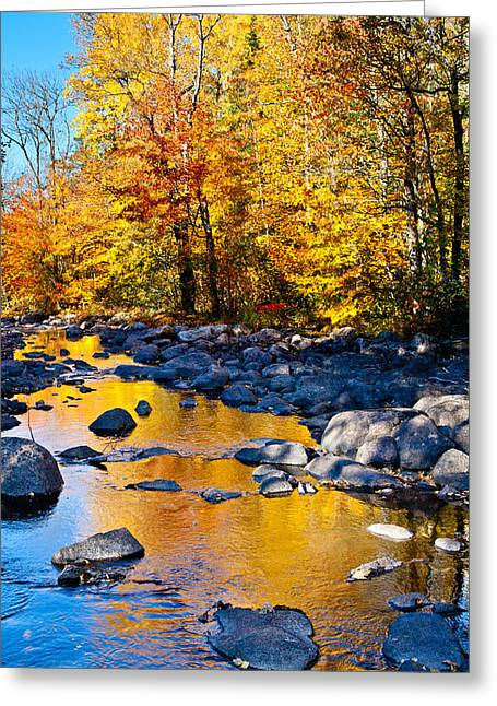 Reflections Down The Creek Greeting Card by Adam Pender