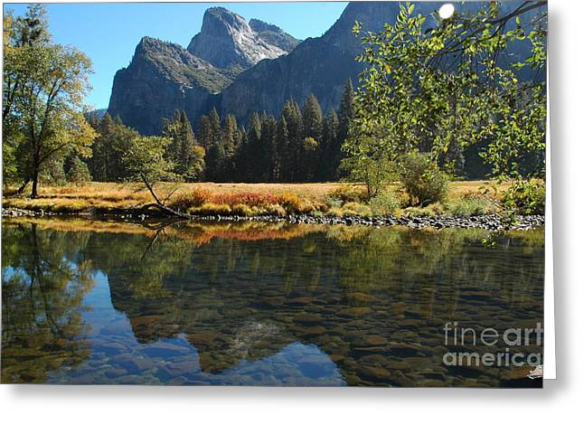 Greeting Card featuring the photograph Reflections In Autumn by Johanne Peale
