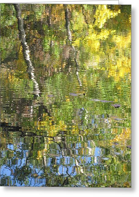Reflections In Paradise 1 Greeting Card by Anita Burgermeister
