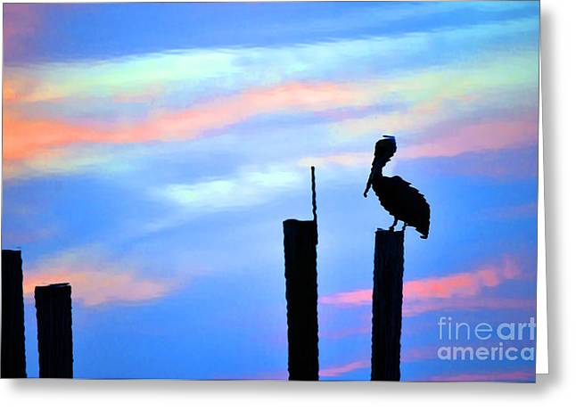 Greeting Card featuring the photograph Reflections In Water With Pelican by Dan Friend