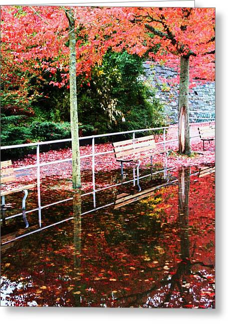 Reflections Of Fall Greeting Card by James Mancini Heath