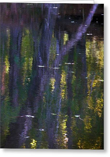 Reflections Of Monet Greeting Card by Terry Eve Tanner