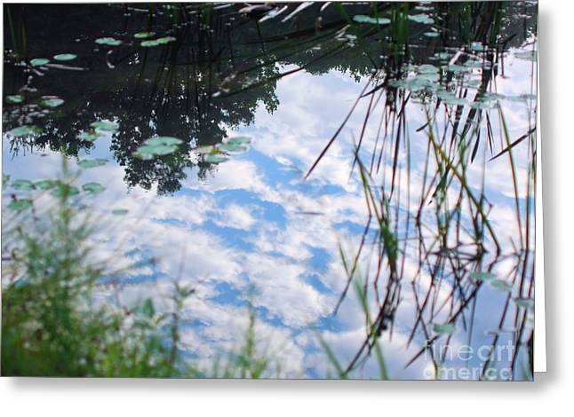Reflections Of The Sky Greeting Card