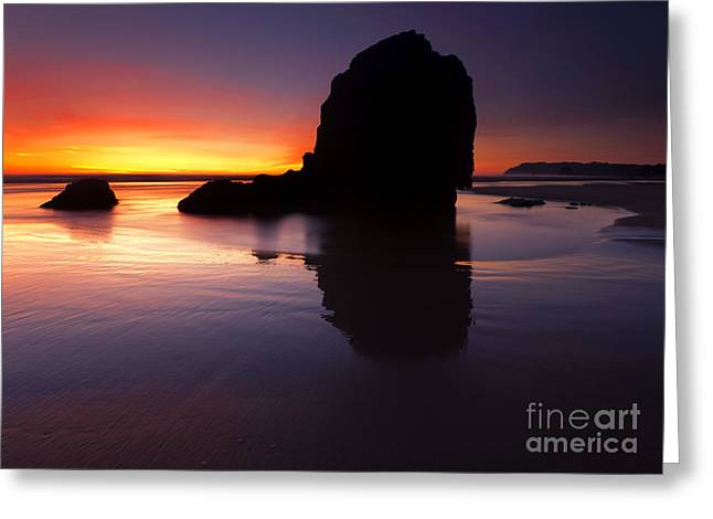 Reflections Of The Tides Greeting Card by Mike  Dawson