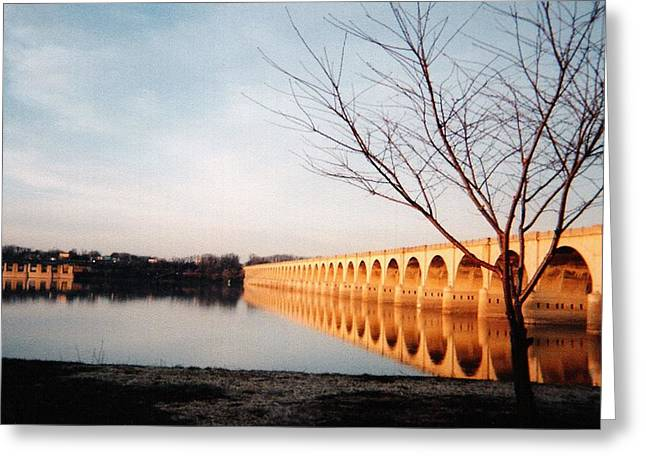 Reflections On The Susquehanna Greeting Card by Ed Golden