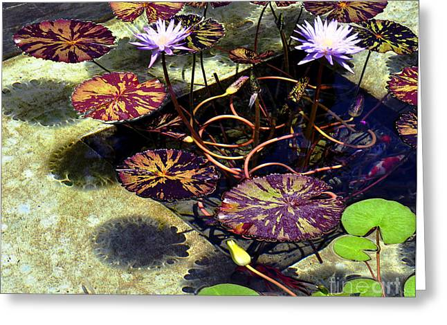 Greeting Card featuring the photograph Reflections On Underwater Life by Clayton Bruster