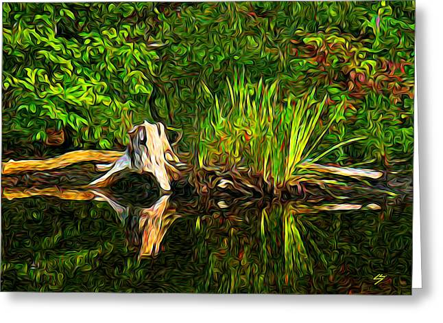 Reflections Greeting Card by Sotiri Catemis