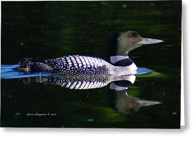 Greeting Card featuring the photograph Reflections by Steven Clipperton