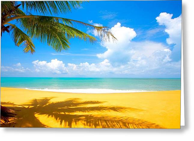 Relaxing On The Beach Greeting Card by Robert Anderson