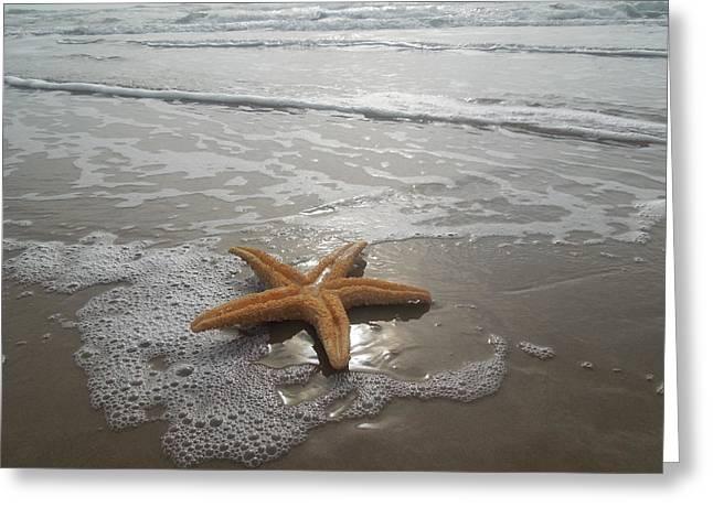 Relaxing Star Fish Greeting Card by Arturo Cabrera