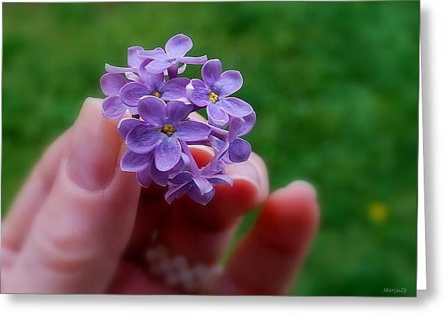 Greeting Card featuring the photograph Make A Wish by Marija Djedovic