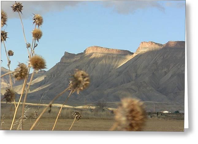 Reprieve From Desert Sun Greeting Card