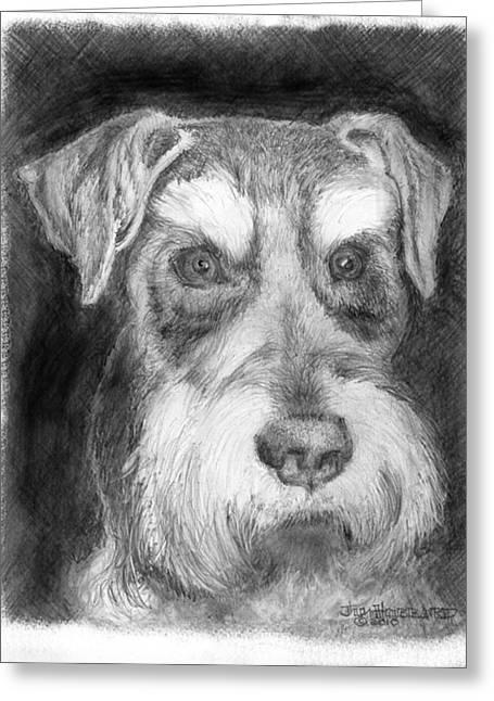 Rescue Dog-kirby Minature Schnauzer Greeting Card by Jim Hubbard