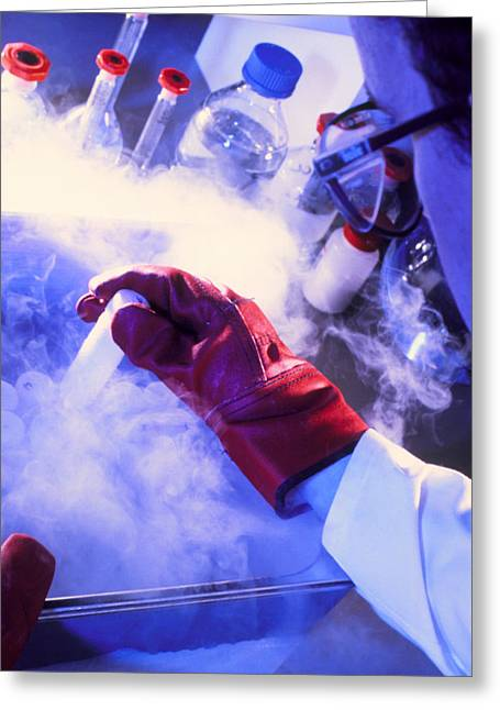 Researcher Removing Sample Tube From Cryostorage Greeting Card by Tek Image