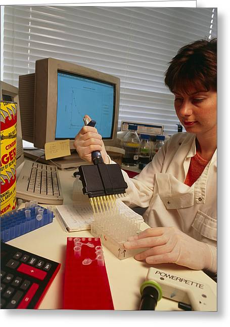 Researcher Using Multichannel Pipette, Elisa Test Greeting Card by Sinclair Stammers