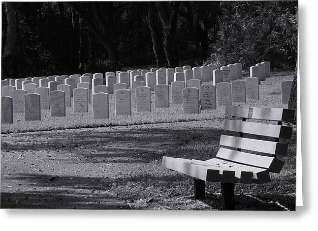 Resting Place Greeting Card by Warren Thompson
