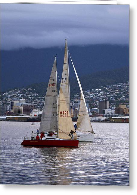 Greeting Card featuring the photograph Return To Harbour by Odille Esmonde-Morgan