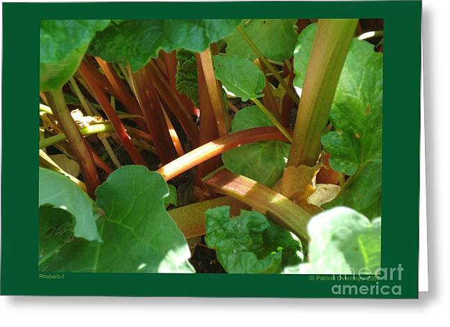 Rhubarb-i Greeting Card by Patricia Overmoyer