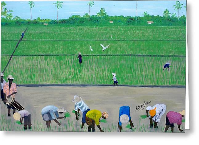Rice Field Haiti 1980 Greeting Card by Nicole Jean-Louis