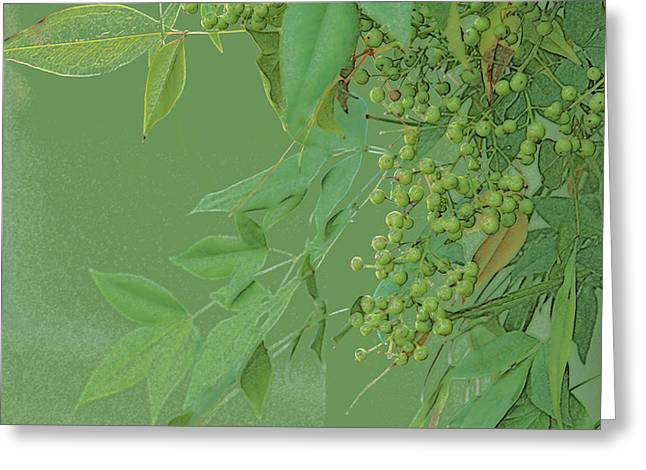 Rich Green Monotone Leaves Abd Berries Greeting Card