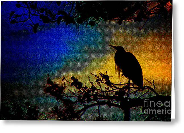 Richly Colored Night  Greeting Card