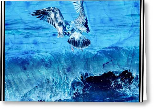 Riding The Wave Blue Gull Greeting Card by Debra  Miller