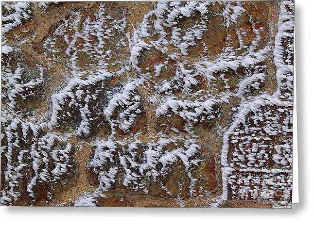 Rime-covered Brick And Stone Wall Greeting Card by Mark Taylor