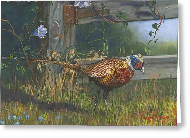 Ringneck Pheasant Greeting Card by Jeff Brimley