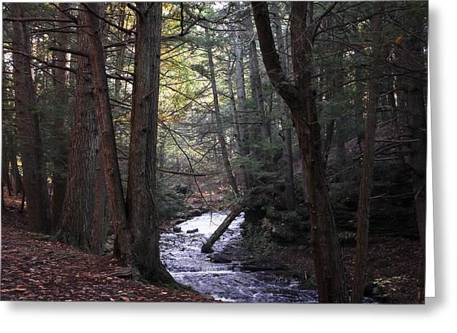 River Below Grayville Falls 1 Greeting Card