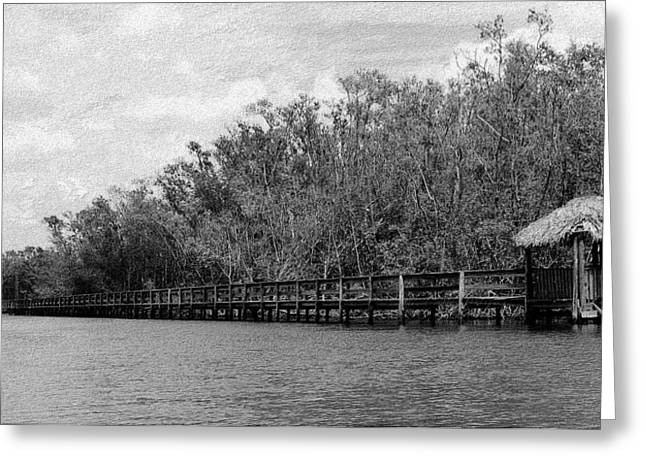 Greeting Card featuring the photograph River Boardwalk by Bill Lucas