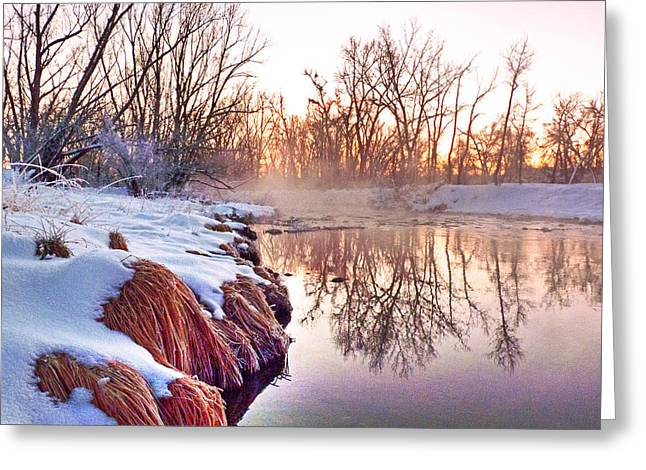 Greeting Card featuring the photograph River Grasses Colorado by William Fields