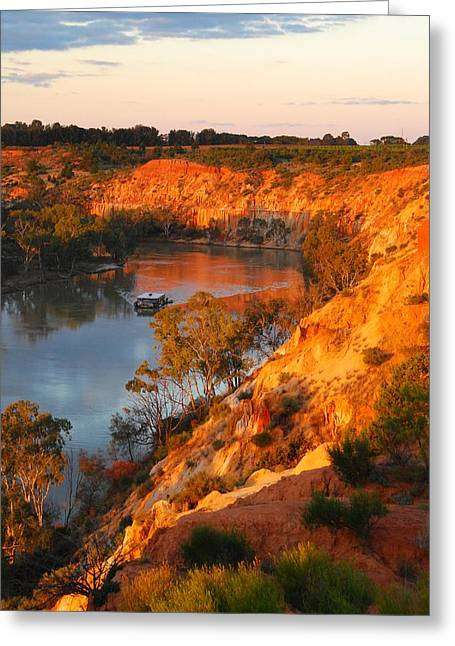 River Murray At Sunset Greeting Card by Patricia Tapping