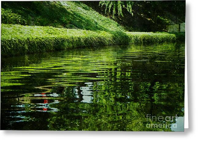 River Reflections Greeting Card by Lianne Schneider